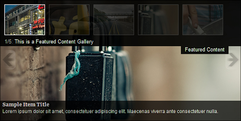Featured Content Gallery vs Dynamic Content Gallery - 2 слайдера для WordPress
